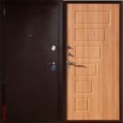 Металлическая дверь Юг 02 Орех Патина