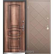 Металлическая дверь Torex Professor 3 02 MP Сибирь
