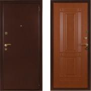 Металлическая дверь СТОП Бастион Клен